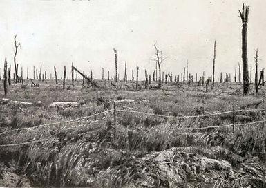 Delville_Wood Somme.jpg