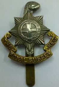 Royal Sussex.jpg