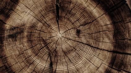 het midden van de cirkel