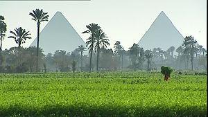 エジプト 農業 画像.jpg