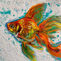 """Goldfish 3"""