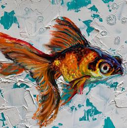"""Goldfish 2"""