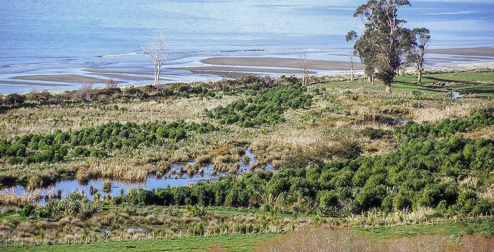 Farm Ecological Restoration