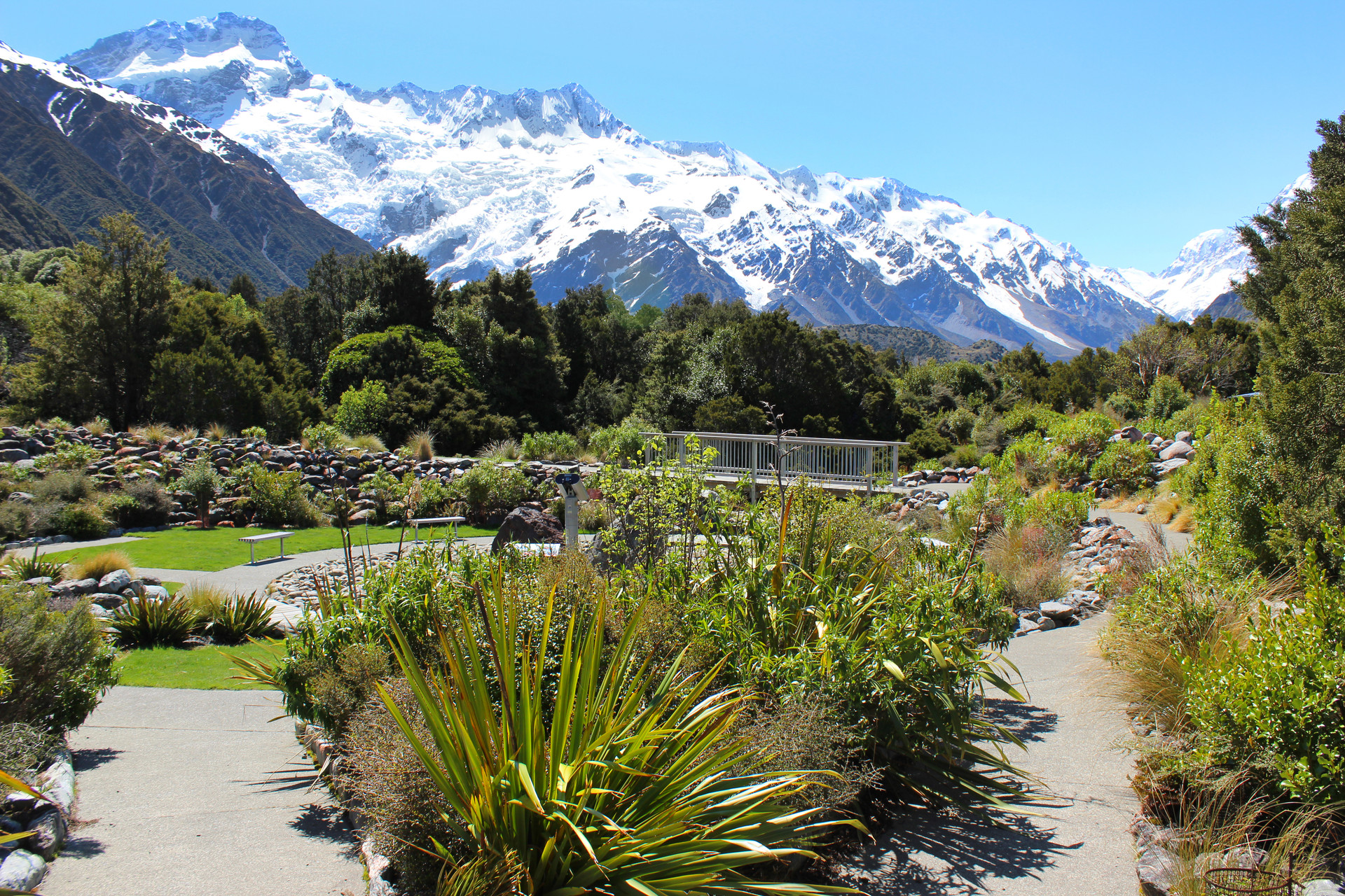 landscape garden with mountain background at mt cook visitor centre