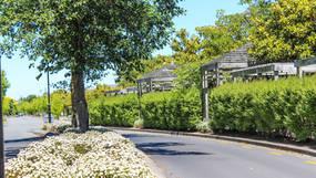 Ryelands Estate, Lincoln, New Zealand