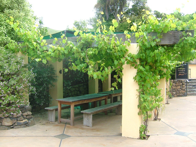 Pergola design with climbers and seating at French Farm Winery, Banks Peninsula
