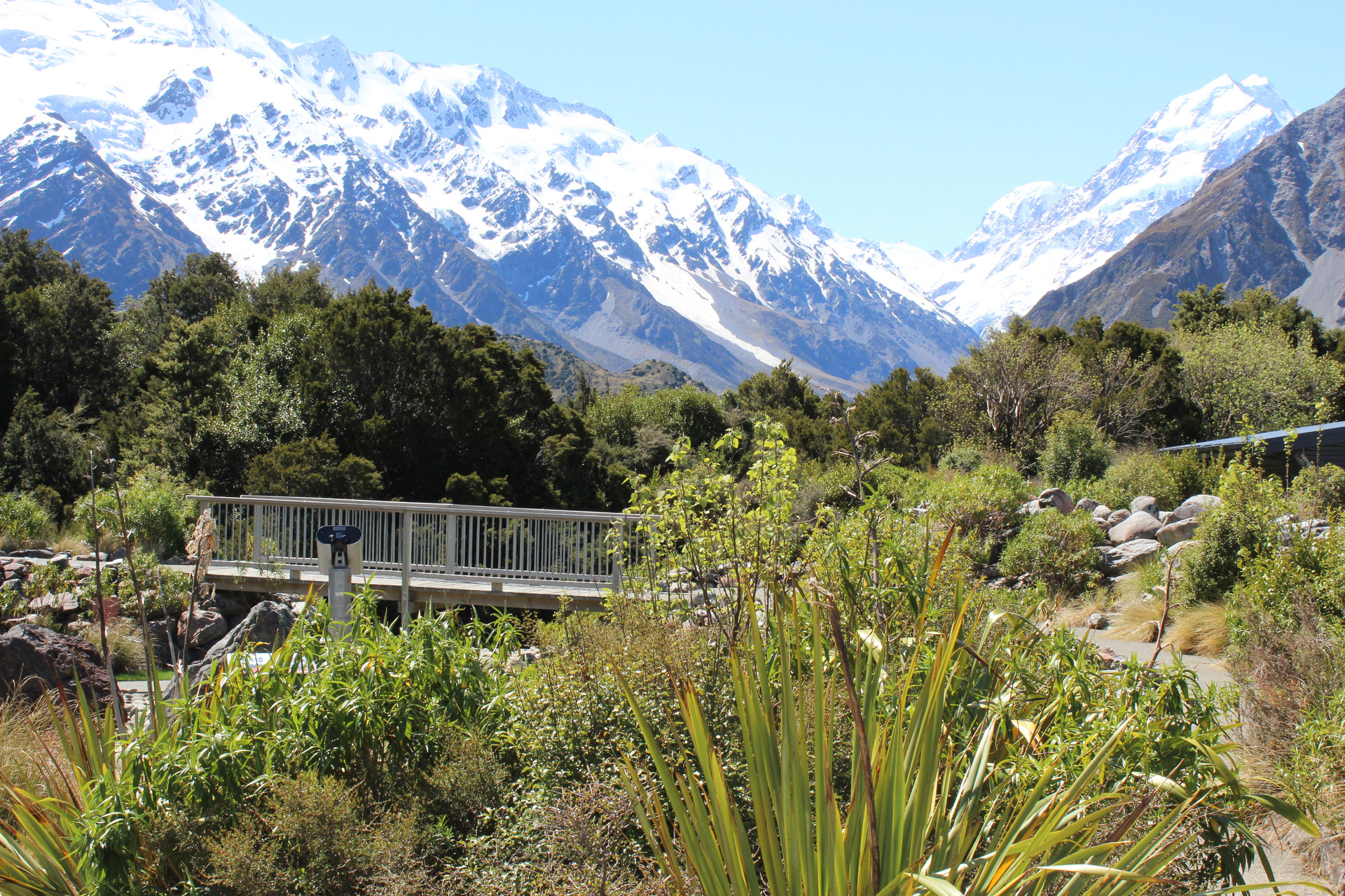 landscape planting design and bridge at mt cook visitor centre