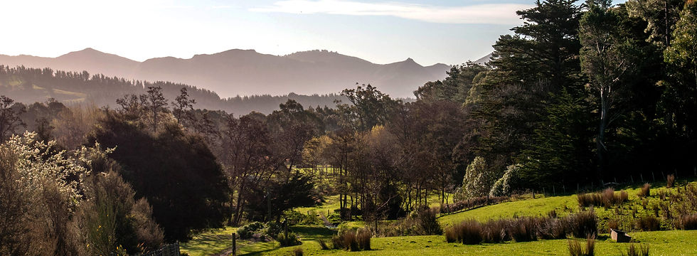 Orton Bradley Park Landscape Design