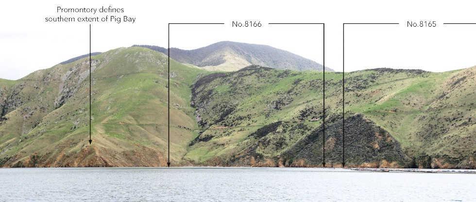 Port Gore Landscape Assessment, Marlborough