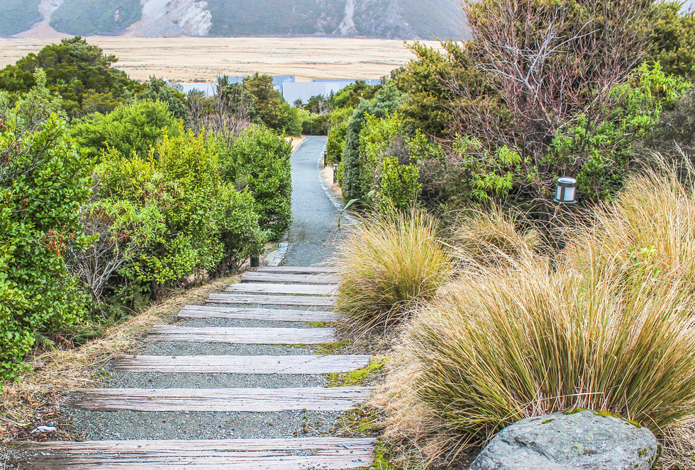 steps design and landscape planting at mt cook