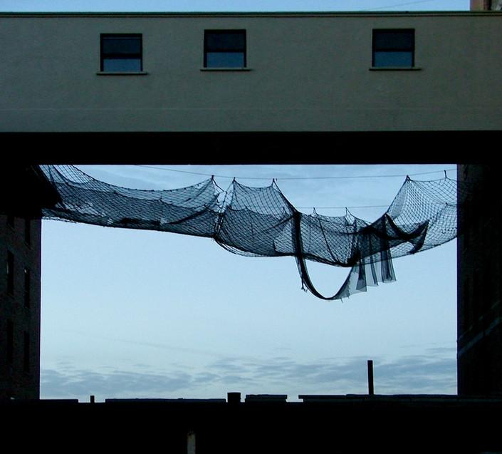 drapped netting.jpg