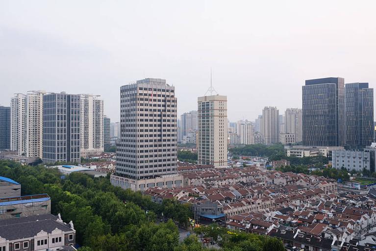 kubski_laurence_crickets_shanghai_1000.j