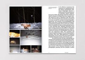 KUBSKI_Laurence_P_Domesticate_Magazine_0