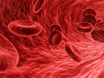 O anemii a jejich strastech