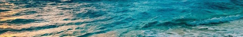 beach-2836300.jpg