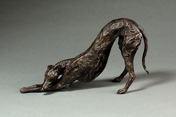 arching greyhound lurcher 2019.jpg