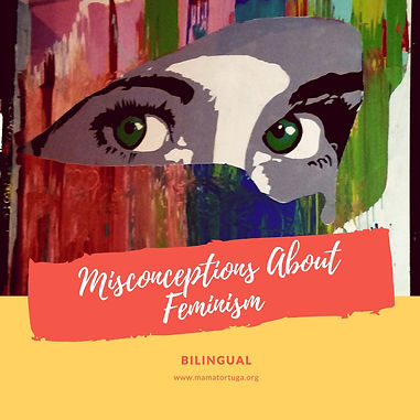 Misconceptions about Feminism