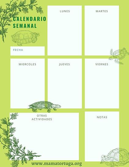 Weekly Schedule Planner.jpg