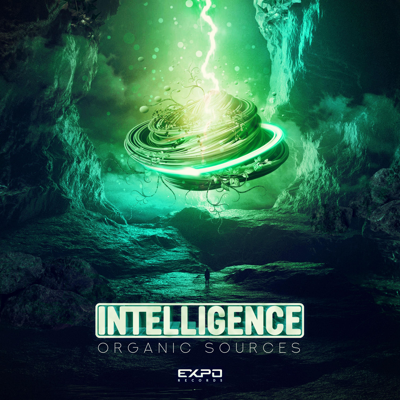 Intelligence - Organic Sources