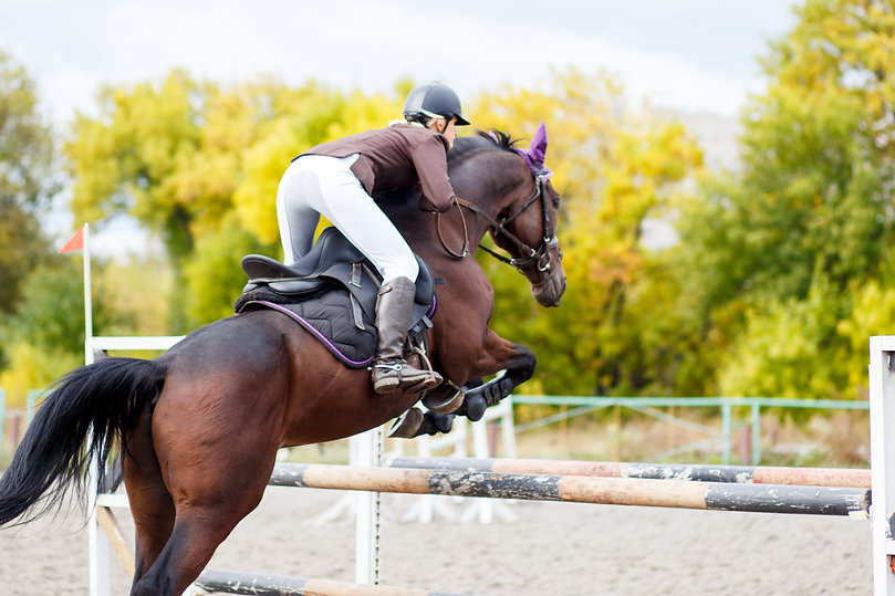 Young rider girl on horse jumping over o
