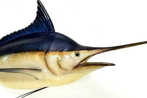 Large Marlin Wall Mount