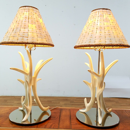 Shell Horn Table Lamps