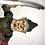 Thumbnail: Iron Bank Trick Dog