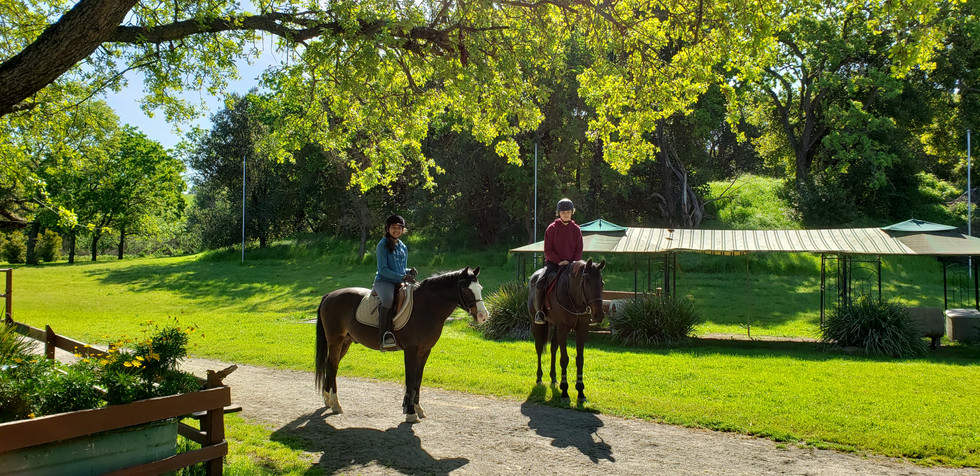 Riding Academy