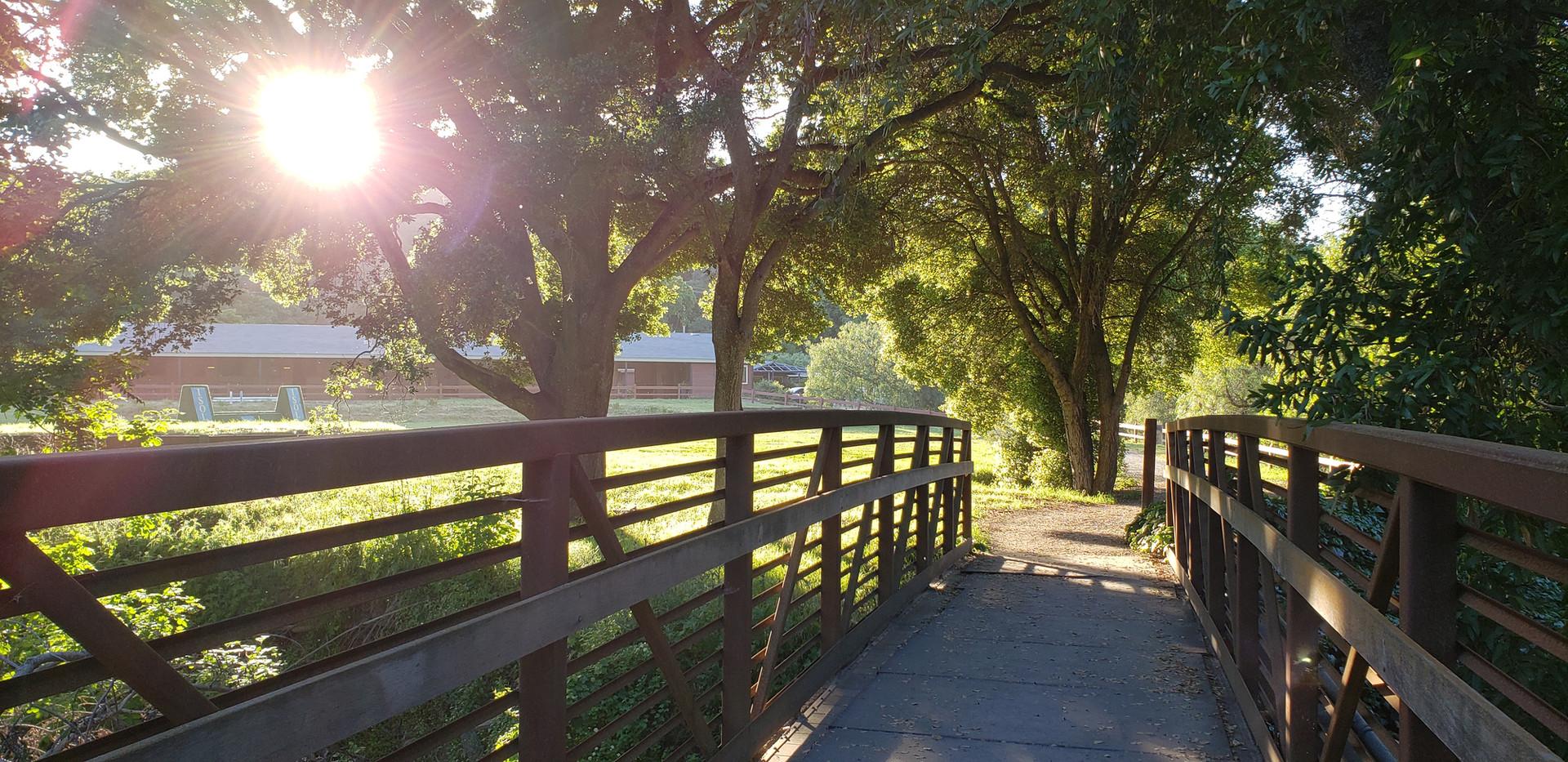 Bridge to Riding Academy