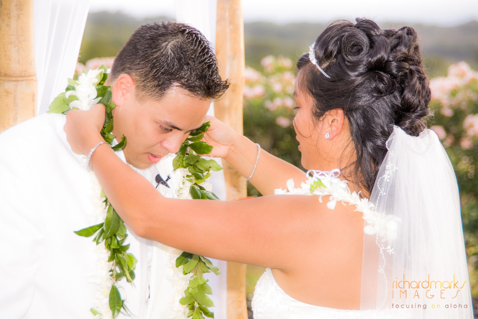 Maui-hawaii-wedding-photographer.com (14