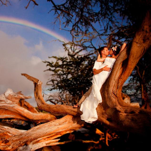 MauiWeddingPhotos (249 of 1).jpg