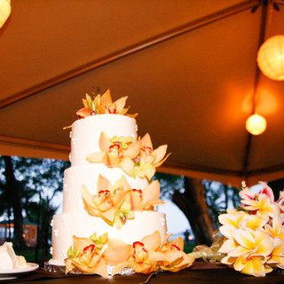 Maui-hawaii-wedding-photographer.com (13