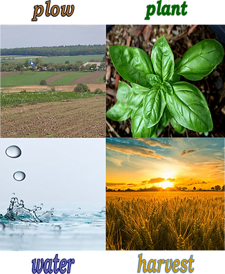 plow plant water harvest.png