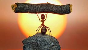 Dépassez vos limites pour accéder à toutes vos possibilités (développement personnel)
