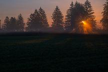 Sonnenstrahlen brechen sich im Nebel