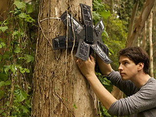 Technology to the Rescue: Saving Rainforests with Cell Phones!