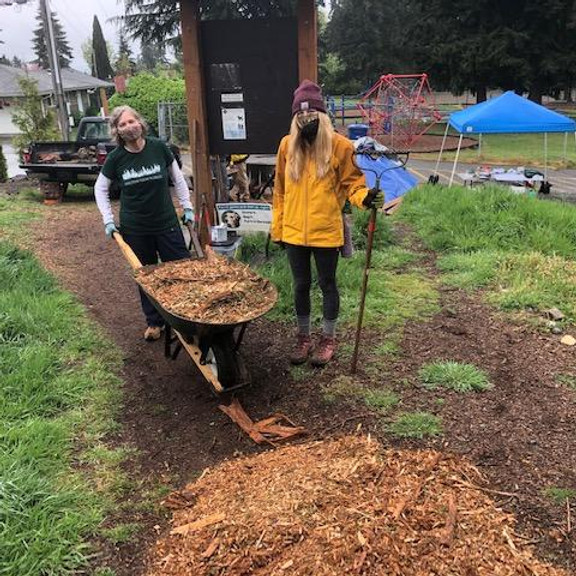 Save Shelton View Forest Work Party