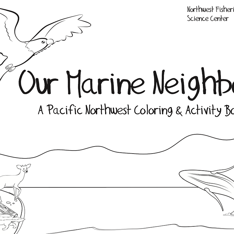 NOAA's Online Orca Coloring Contest