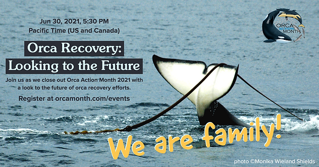 Orca Month Closing Event Graphic Copy.pn