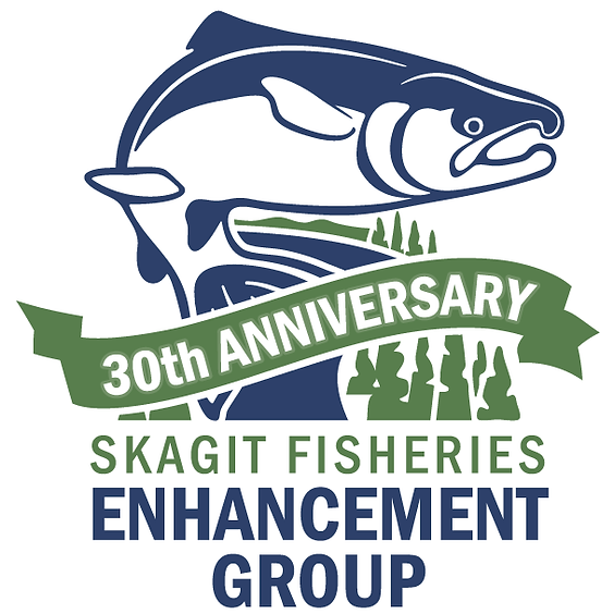 Skagit Fisheries Enhancement Group Presents: Orca Observation and Photography Showcase with Bart Rulon