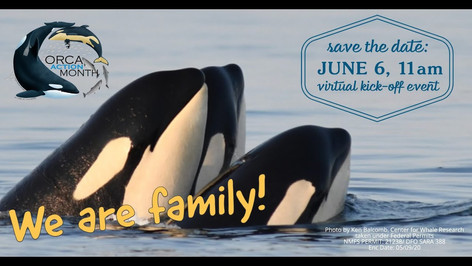 Orca Action Month kick-off event