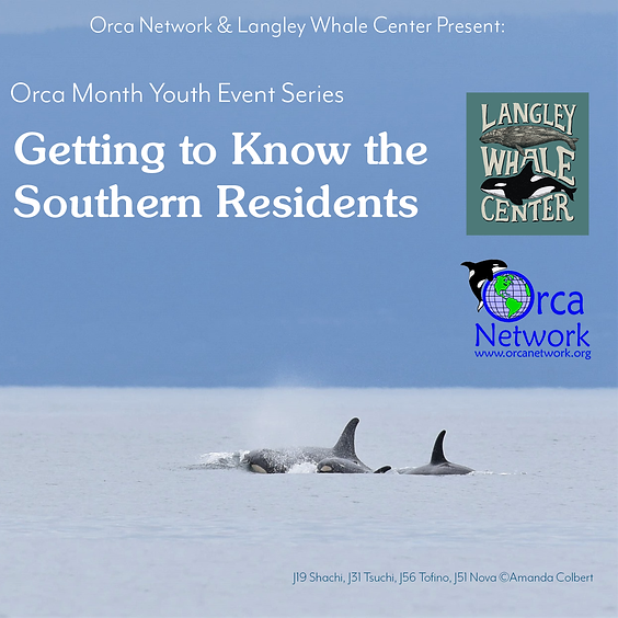 Youth Event Series: Getting to know the Southern Residents