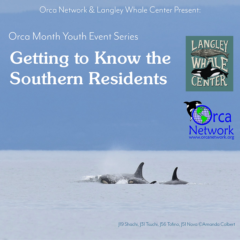 Youth Event Series: Getting to know the Southern Residents (1)