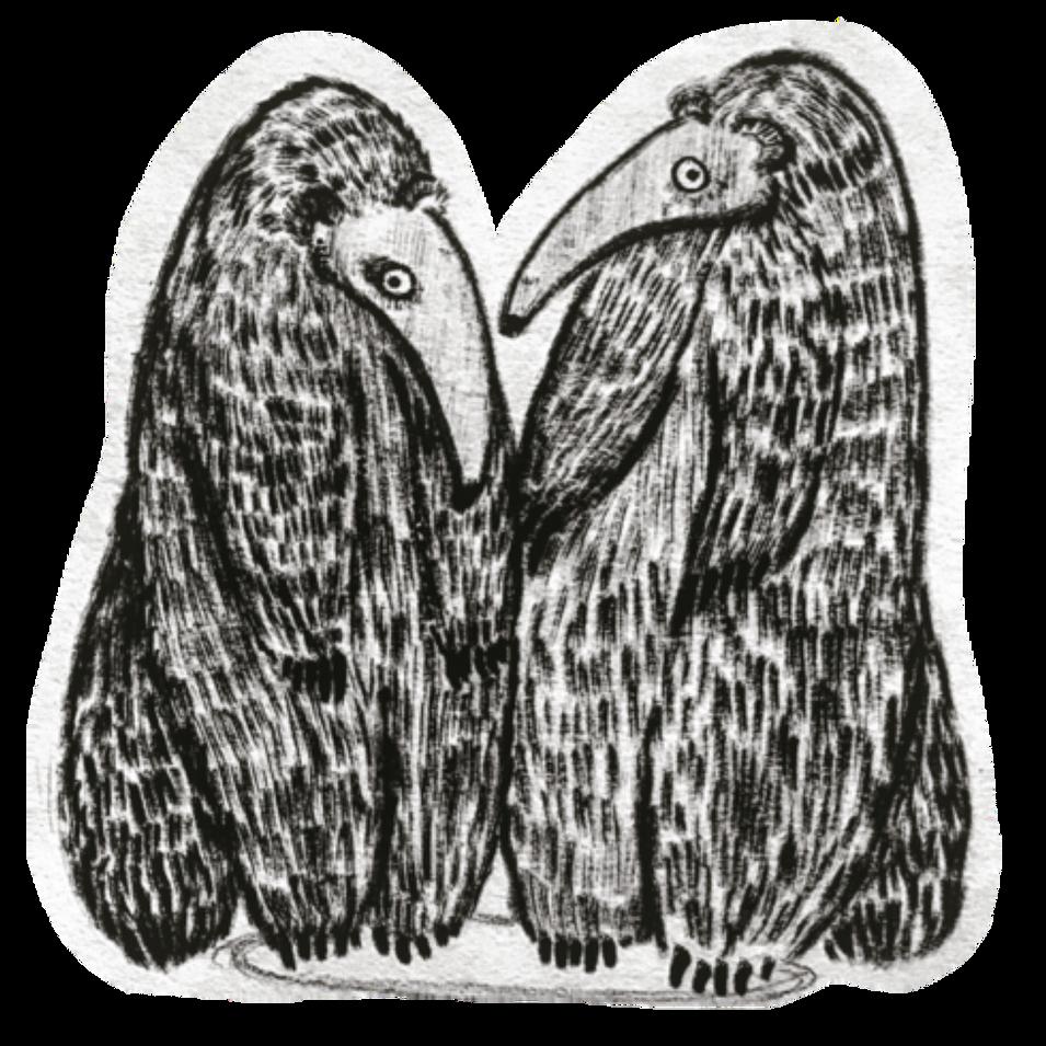 Anteater 2website.png