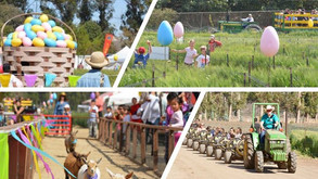 Easter Festival At Underwood Family Farms!
