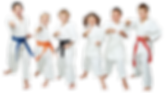 Karate-banner-1-2.png