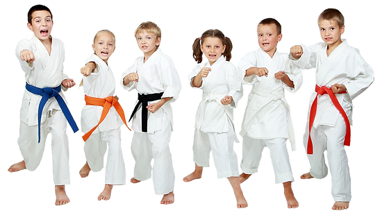 Karate-banner-1-2.png