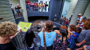 Free Museum Days For LA Kids in August 2019!