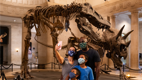 Natural History Museum LA and LA Brea Tar Pit Are Reopening!