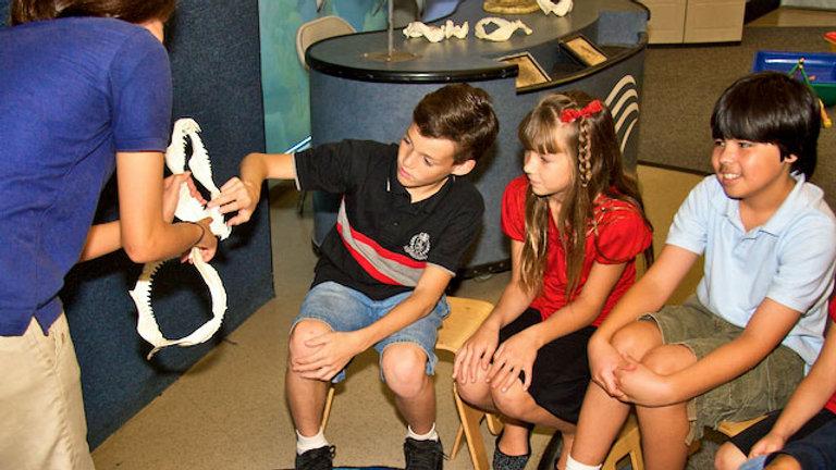 Aquarium of the Pacific Junior Biologist Camp